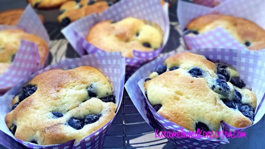 Blueberrymuffin IV OK