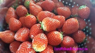 Erdbeer-Rhab.-Konfitüre II OK