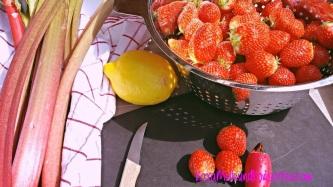 Erdbeer-Rhab.-Konfitüre V OK